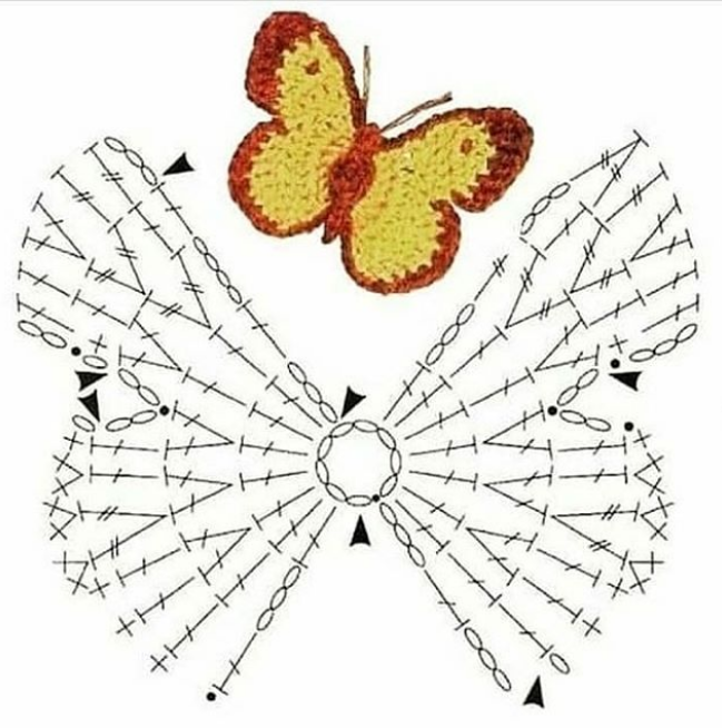 бабочка со схемой